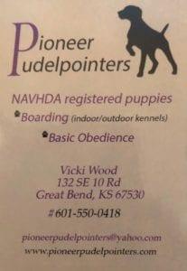 Pioneer Pudelpointers