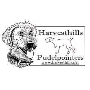 Harvesthills Pudelpointers