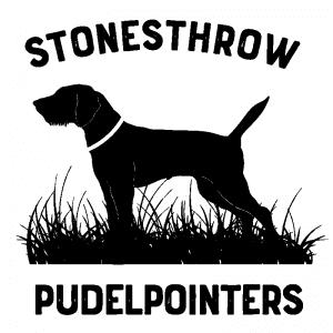 Stonesthrow Pudelpointers